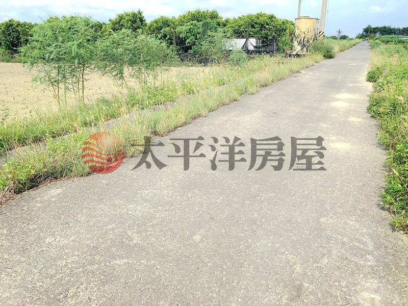 佳里龍安段田地,台南市佳里區龍安段