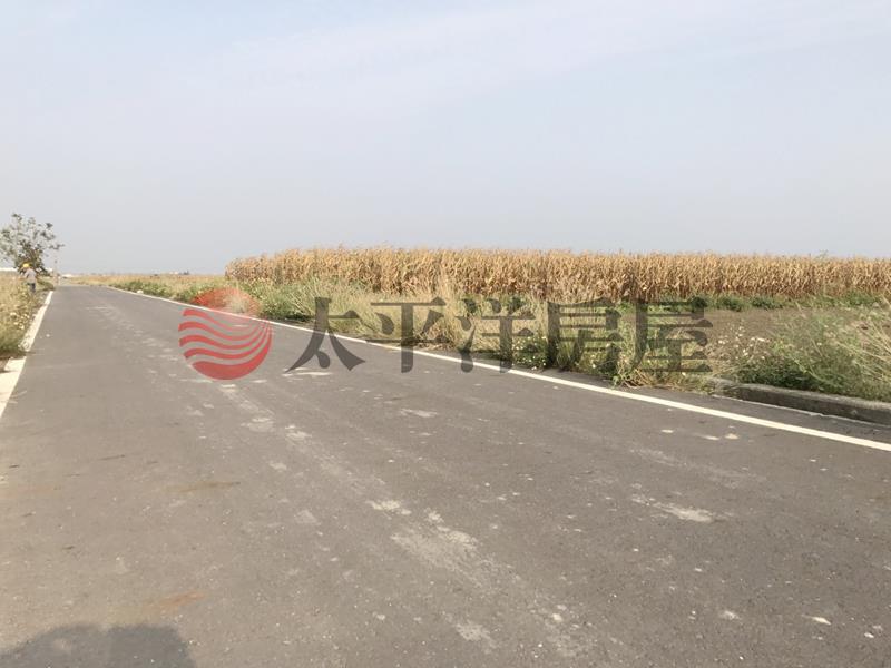 佳里塭子內段田地,台南市佳里區成功路