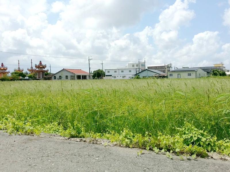 竹子港庄內雙面路農地,台南市七股區竹橋段