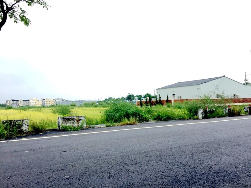 佳里蚶寮段農地,台南市佳里區蚶寮段