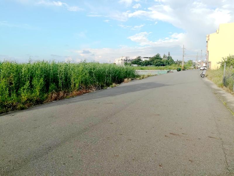 七股義合漂亮農地,台南市七股區槺榔段